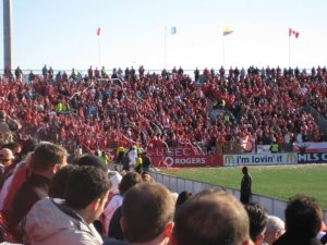 crowd at a Toronto FC game